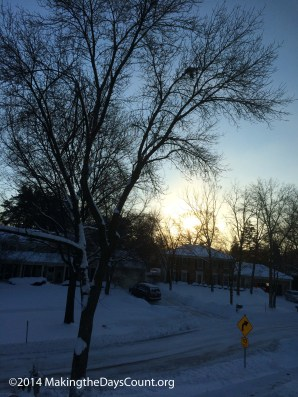 Monday morning's view - it is -15F and windy feels like -40F