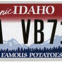 License plates and sunshine