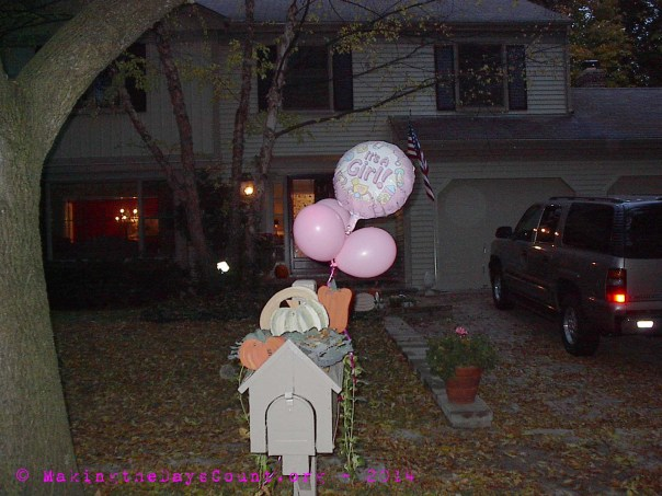 "October 23, 2002 - ""It's a Girl"" fly from the mailbox and leaves litter the ground. It's fall."