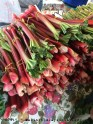 rhubarb - Mother's Day desert