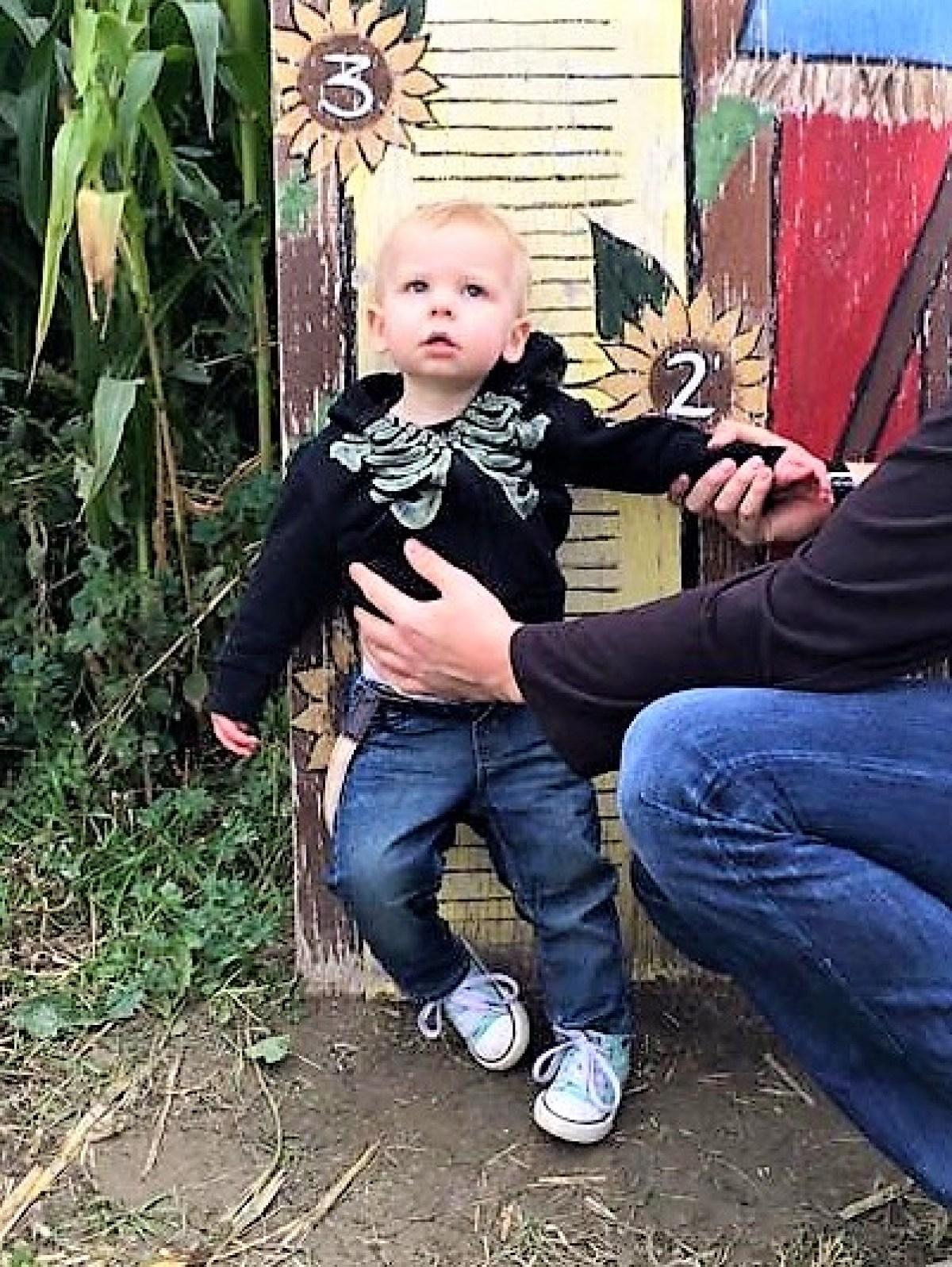 McMillan Farms Pumpkin Adventure! - 2 years ago
