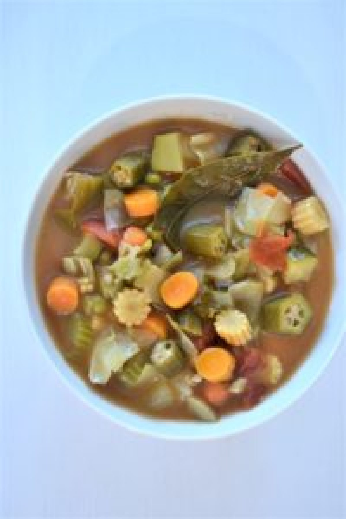 Weight Loss Veggie Soup