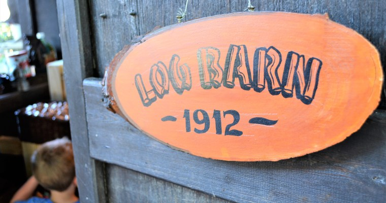 Log Barn Adventure! – Armstrong B.C.