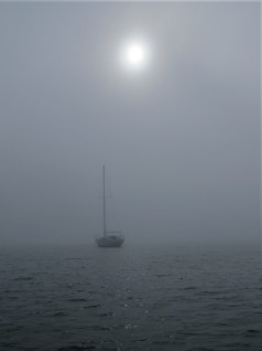 76 longbeach morroringin fog