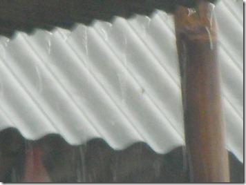 SANY0209