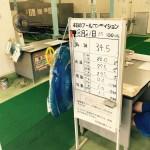 2017年8月21日の和田掘りプール