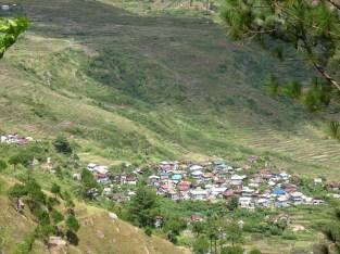 pidlisan1_2007