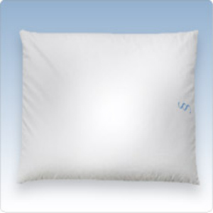 Sweet Spot Pillow