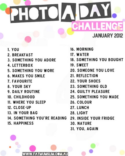 Photo A Day Challenge January