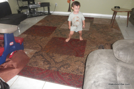 Mohawk Home Rug Review and Sweepstakes