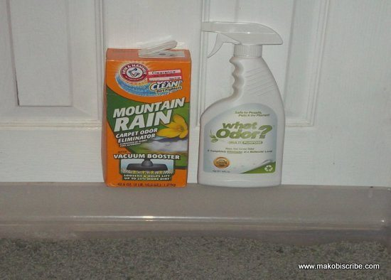 Eliminate Odors In Your Home