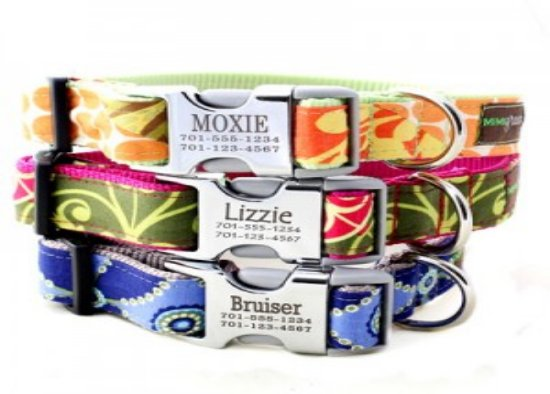 Personalized Dog Collars From Mimi Green Sweepstakes