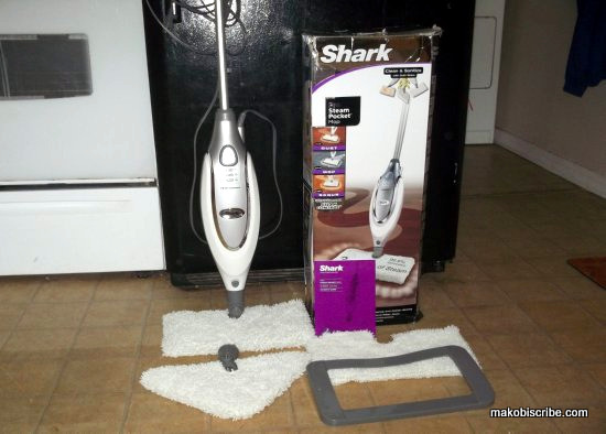 Steam Mops For Cleaning From Euro Pro Review