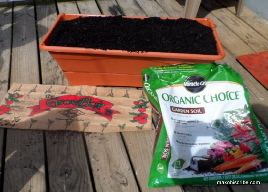 Container Vegetable Gardening Kits