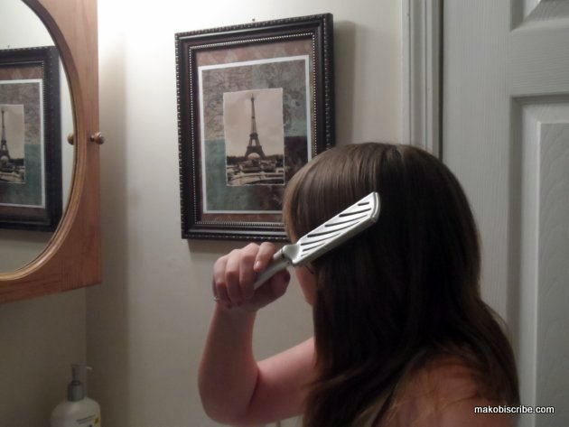 Choosing The Right Brush For Your Hair