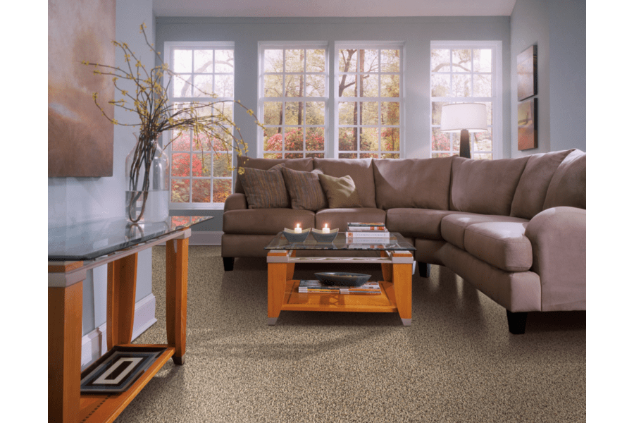 Families Love Stain Resistant Carpet From SmartStrand