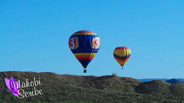 Hot Air Balloon (7)