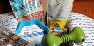 Fun Monthly Dog Treat Box