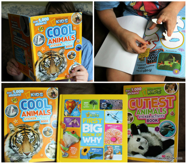 Fun Sticker Books For Kids