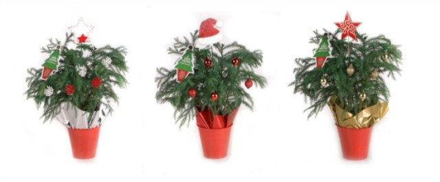Great Alternatives To A Christmas Tree