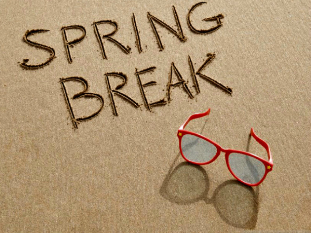 5 Things To Take On Spring Break