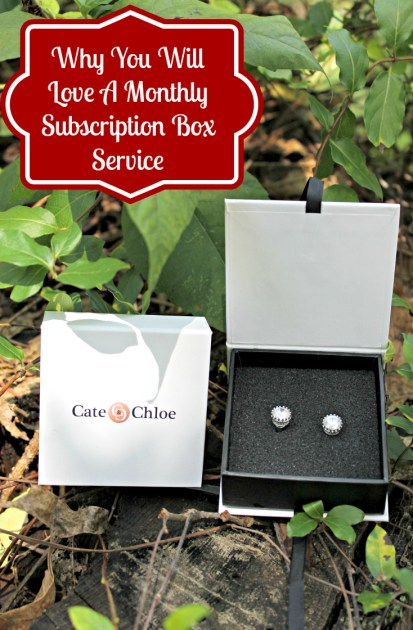 Why You Will Love A Monthly Subscription Box Service pin