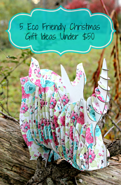 5 Eco Friendly Christmas Gift Ideas Under $50