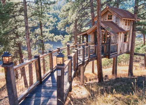 tree house in woods