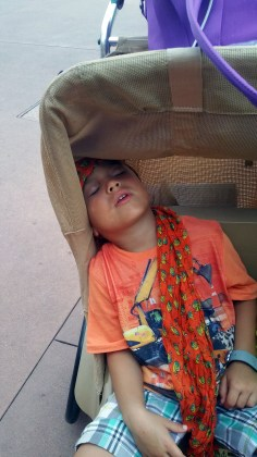 epcot sleeping kid