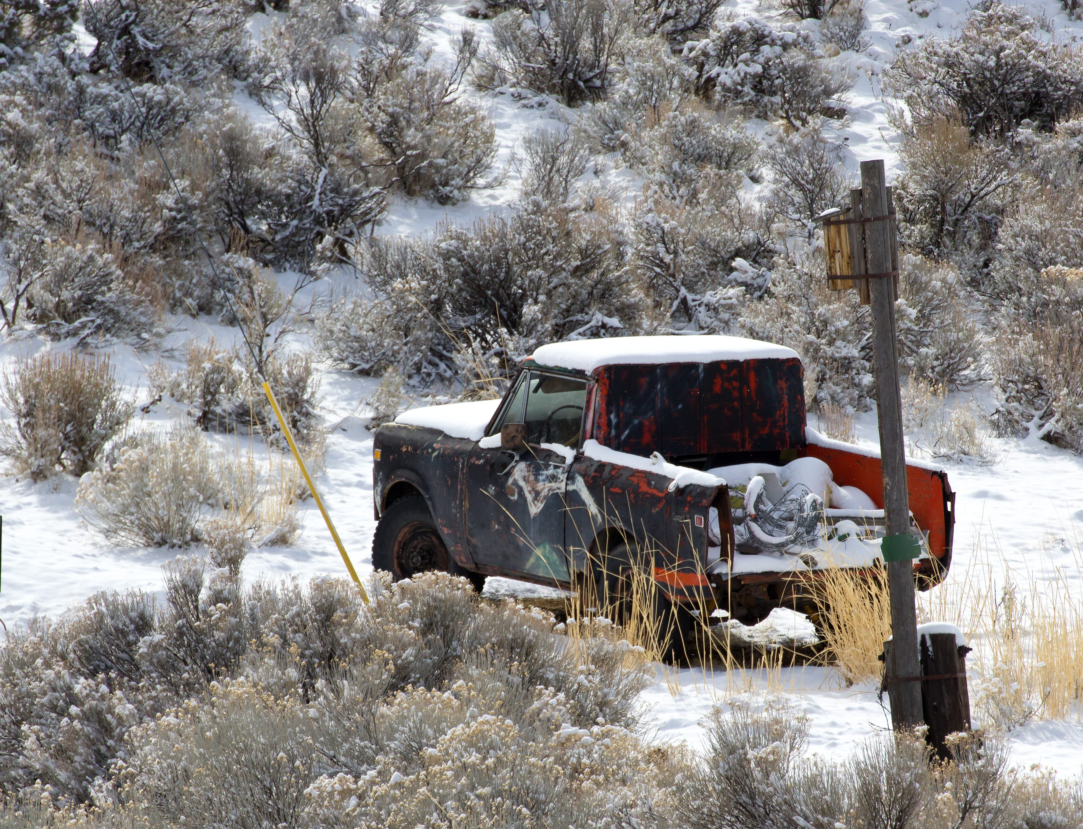 Tearing Up the Trails: Off-Roading Tips to Get You Started