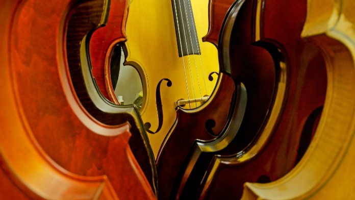 upright-double-bass-fiddles-1