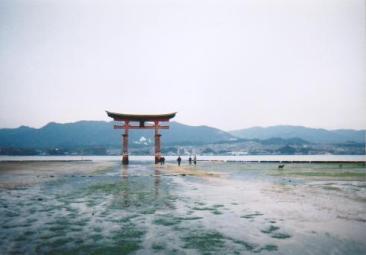 広島県宮島の厳島神社にて 干潮時の鳥居