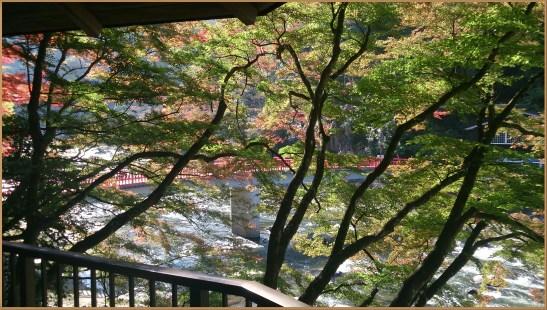 香嵐渓の展望台から待月橋