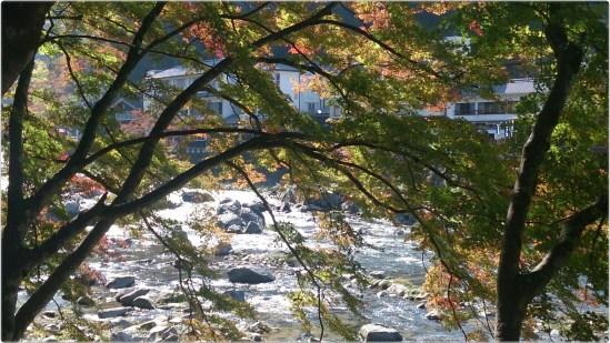 香嵐渓の河と紅葉の枝01