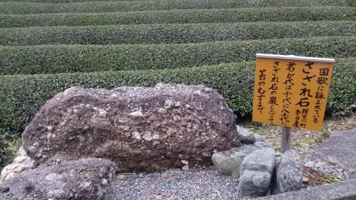 天空の茶畑のさざれ石