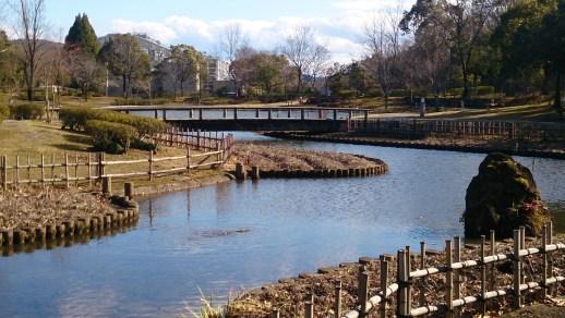 グリーンピア春日井の池01