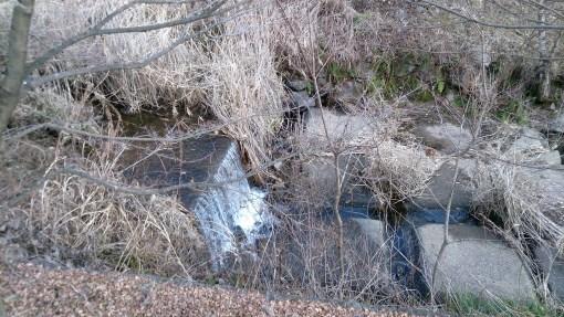 馬籠宿のホタルの里の川