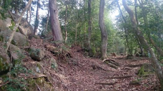 御嵩町のみたけの森の山道01