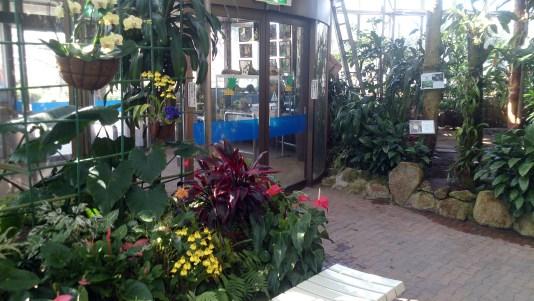 東谷山フルーツパークの熱帯果樹温室の出口