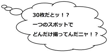 安八梅園のミケコメ02