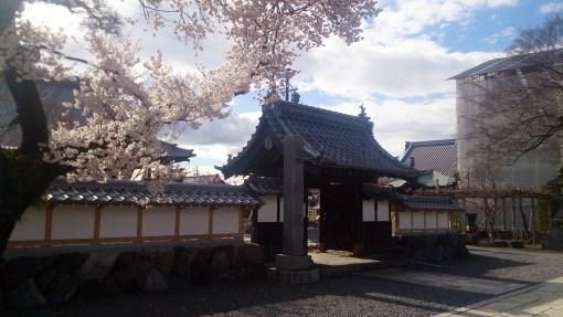 曼荼羅寺の門と桜01