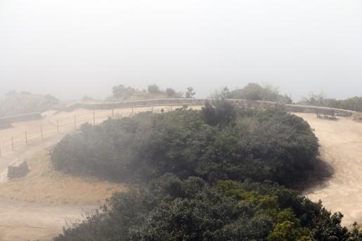 道の駅うずしお11-1の霧中の公園内