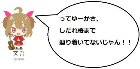 奥山田桜の文乃コメ3