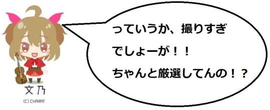 奥山田桜1の文乃コメ2