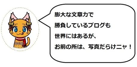 奥山田桜4のミケコメ1
