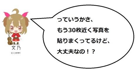 淡墨桜3の文乃コメ2