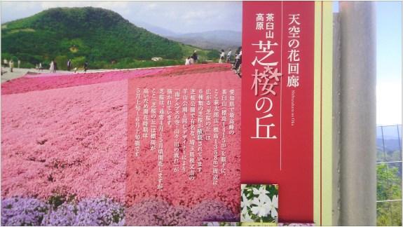 茶臼山2の2-1芝桜の丘の看板1