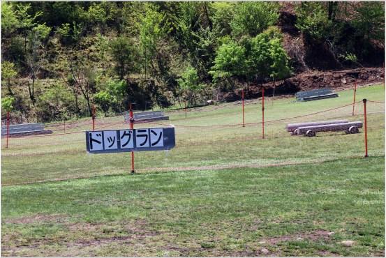 茶臼山1の1-3-3ドッグラン