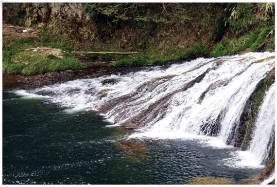つたのふち9-6滝と池