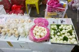 ウミガメの卵。右側のはすぐに食べれるらしい。ゆで卵?